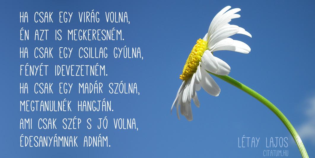 anyáknapi versek idézetek Ha csak egy virág volna