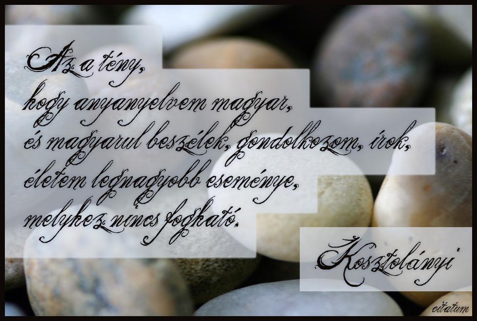 kosztolányi dezső idézetek a magyar nyelvről Az a tény, hogy anyanyelvem