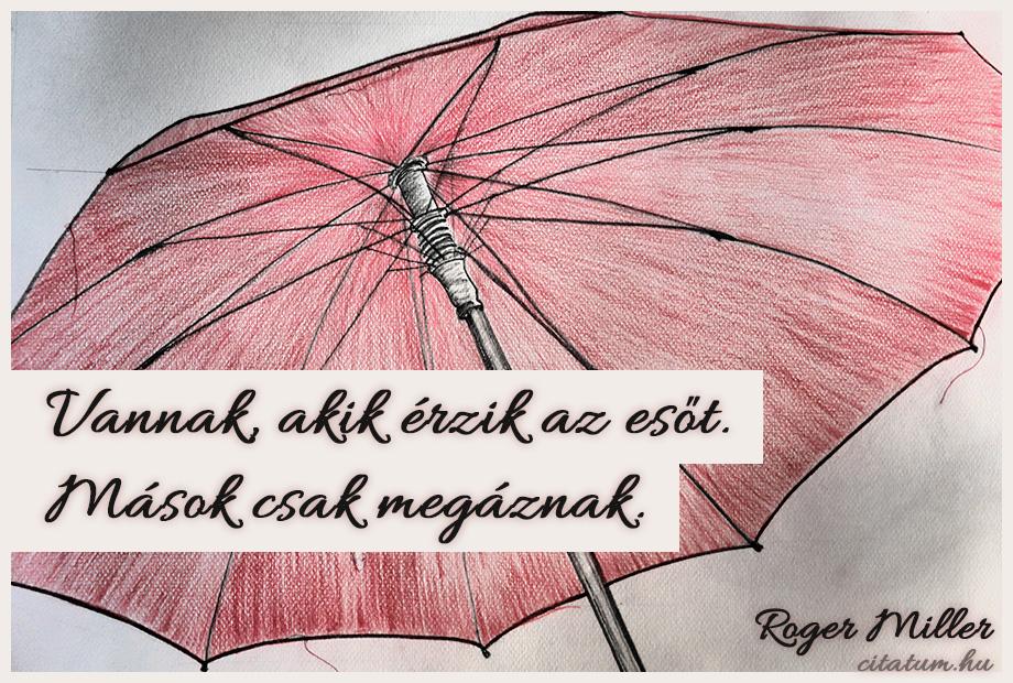 magyar irodalom idézetek Vannak, akik érzik az esőt.