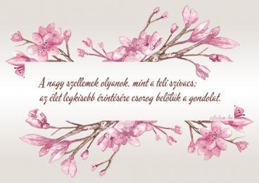 bölcs idézetek képekkel Bölcs idézetes képek
